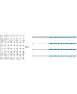 Subdural Grid Electrodes